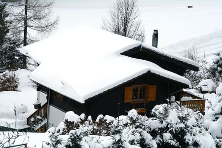Winter home with tree in snow. photo