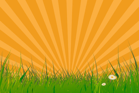 Vector - Grass with sun burst effect. Spring time. Stock Vector - 3064040