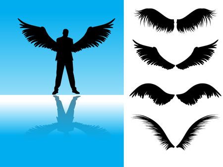 falcons: Vector - Collection of detailed angel or bird wings.