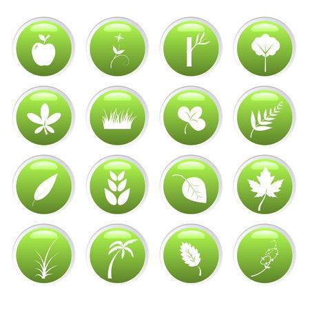 illustration herbe: Vector - Green environnement 3D miroitant des ic�nes avec la nature th�me