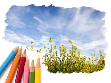 Dibujo a lápiz de color de un campo amarillo con azul cielo abierto Foto de archivo - 5171151
