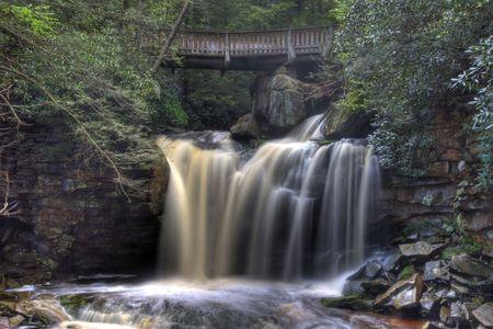 Elakala Falls on the Blackwater River near Davis, West Virginia Imagens