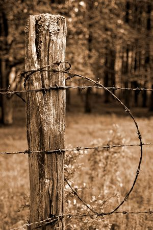barbed wire and fence: Fence post and barbed wire in sepia Stock Photo
