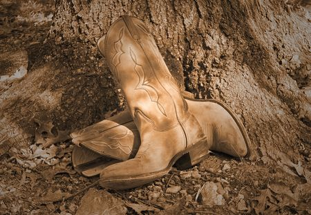 Old western boots leaning against oak tree