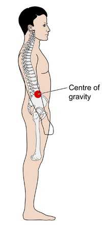 Diagram to show the center of gravity of a human adult Illustration
