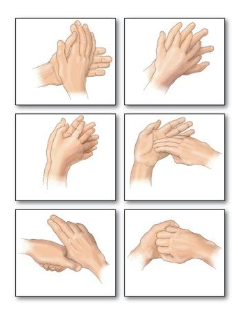 teknik: Ritning som visar den korrekta metoder för handtvätt för att avlägsna alla spår av bakterier