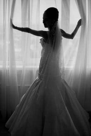 The bride in a half-turn shows a beautiful wedding dress Stock Photo - 8950722
