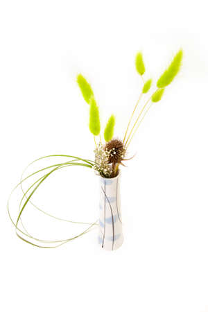 Thin vase with dry grasses on a white background