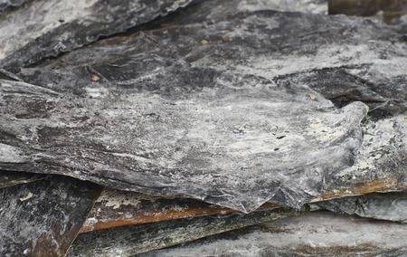 dashi: Salty leaves dry seaweed Dashi Kombu Laminaria angustata closeup, shallow DOF.
