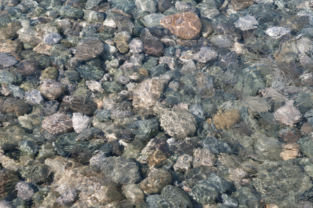 limpid: natural background, sea stones under clear water, soft focus