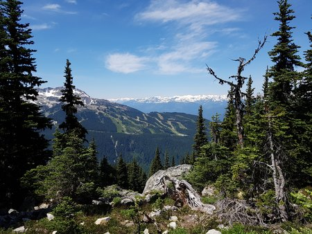 View of Whistler Mountain from Overlord Trail on Blackcomb Mountain