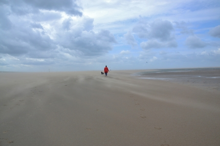 Walking on the beach in the Netherlands photo