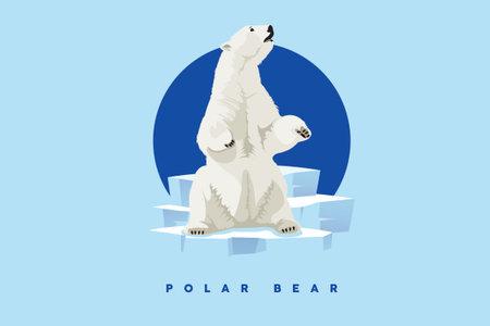 Polar Bear, White bear character. Illustration character Bear Cartoon. Illustration
