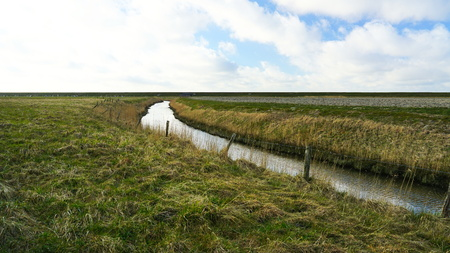 dyke: creek behind the dyke