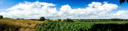panorama of fields and meadows Stock Photo