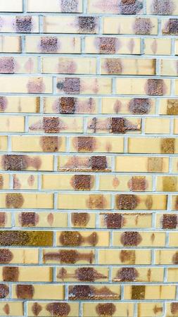 paredes de ladrillos: pared de ladrillo de color amarillo Foto de archivo