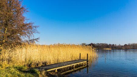 landscape with jetty at a lake and weed grass Stockfoto