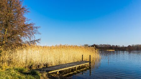 landscape with jetty at a lake and reed grass