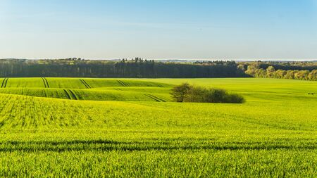 landscape with green fields, forest and hills in spring season Stock fotó