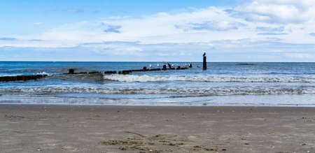 baltic sea beach in Bansin Usedom with seagulls standing on breakwater Stock fotó