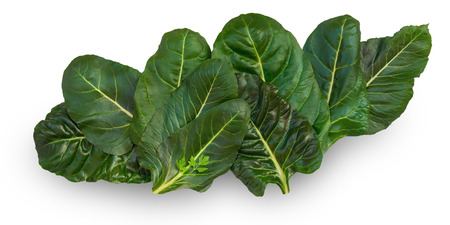 ribbed: Chard leaves