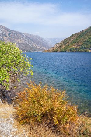 Autumn day of the Bay of Kotor. Montenegro