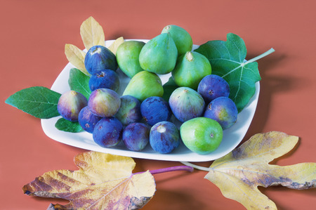 Autumn still life. Different types of fresh figs with leaves Banque d'images