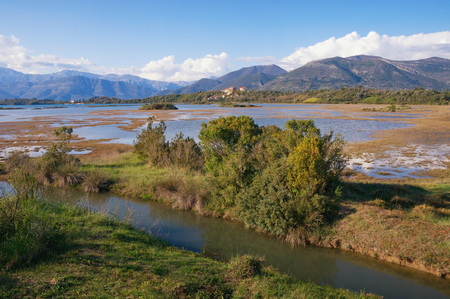 Wetland landscape on a sunny spring day. Montenegro. View of special botanical and animal reserve Tivat Salina ( Tivatska Solila )