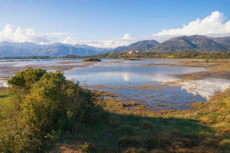 Wetland landscape. Montenegro. View of special botanical and animal reserve - Tivat Salina ( Tivatska Solila ) - on a sunny spring day