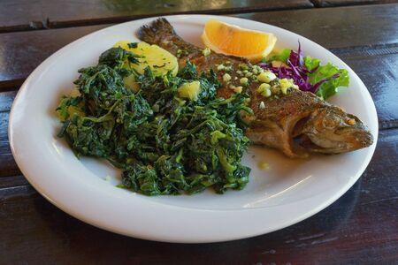 Balkan cuisine. Grilled fish ( trout  ) with leafy green vegetables. Dark rustic background