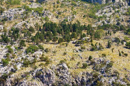 Steep mountain slope on a sunny autumn day, background. Dinaric Alps, Montenegro Stockfoto