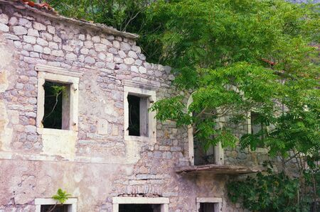 Abandoned old stone building, bright green branches of trees from windows