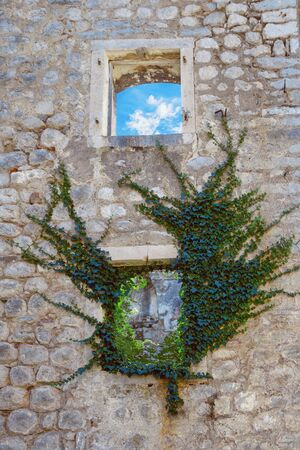Wall of an abandoned stone house on a sunny day. A blue sky with white clouds is visible through the window, green ivy is growing around another window. Montenegro Stockfoto