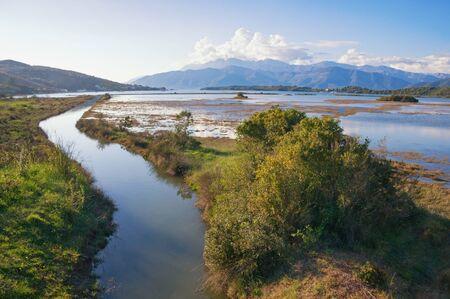 Beautiful wetland landscape. Montenegro, Tivat. View of Tivat Salina  ( Tivatska Solila ) - special botanical and animal reserve