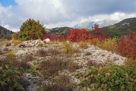Autumn. Beautiful mountain landscape. Dinaric Alps, Montenegro, Sitnica region