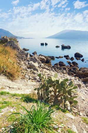 Sunny winter, beautiful Mediterranean landscape. Montenegro, Adriatic Sea. View of Bay of Kotor near Herceg Novi city 写真素材