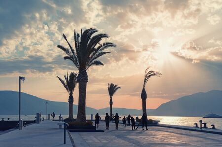 Sunset. Beautiful Mediterranean landscape with embankment and silhouettes of palm trees. Vacation concept. Montenegro, Tivat city