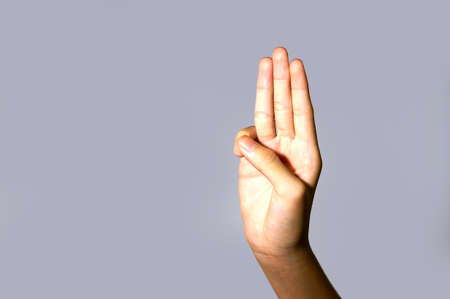 declare: Scout honor hand gesture isolated on light blue background