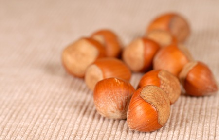 Several whole fresh hazelnuts resting on a table 版權商用圖片