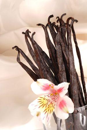 전체 바닐라 콩 및 유리에서 꽃