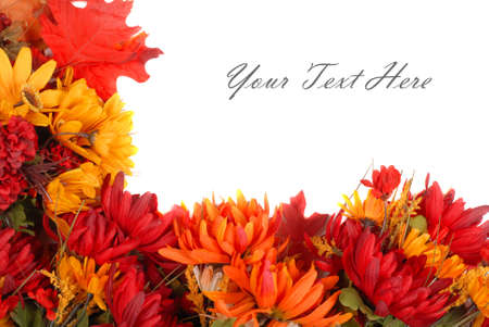 Autumn flowers placed in a pattern to form a border photo