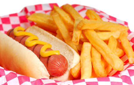 hot dogs: Freshly grilled hot dog with mustard and french fries.