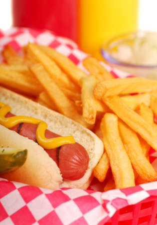 Freshly grilled hot dog with french fries and condiments photo