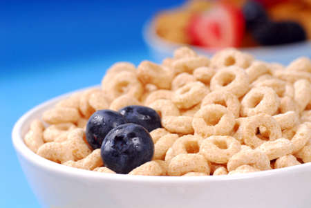 Bowl of crispy oat cereal with fresh blueberries and other fresh fruits