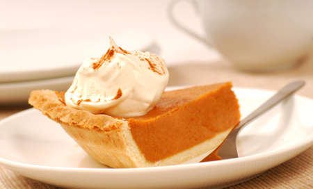 dusting: Delicious slice of pumpkin pie with whipped cream and a dusting of cinnamon Stock Photo