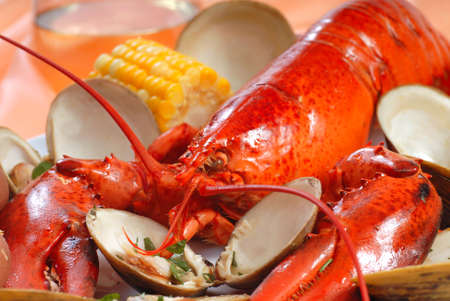 lobster dinner: Delicious boiled lobster dinner with clams, corn and potatoes
