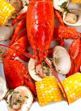 Delicious boiled lobster dinner with clams, corn and potatoes photo