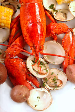Boiled lobster dinner with clams, corn and potatoes photo