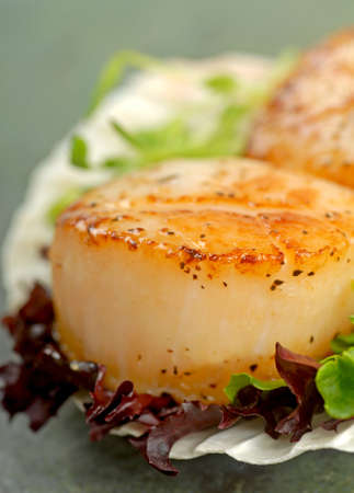 seared: Delicious pan seared sea scallop with lettuce and pea shoots served on a scallop shell Stock Photo