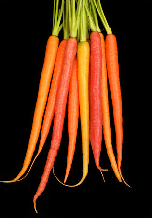 Delicious red, yellow, and orange organic carrots isolated on black